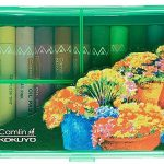 Camel Oil Pastel with Reusable Plastic Box – 25 Shades