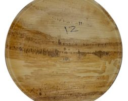 Areca Plates 12 inch's Round Pack of 25